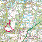 Ambling – February 2020 – Hankley Common (South)